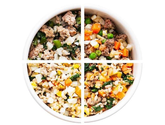 Чем кормить джек-рассел-терьера – натуральное питание