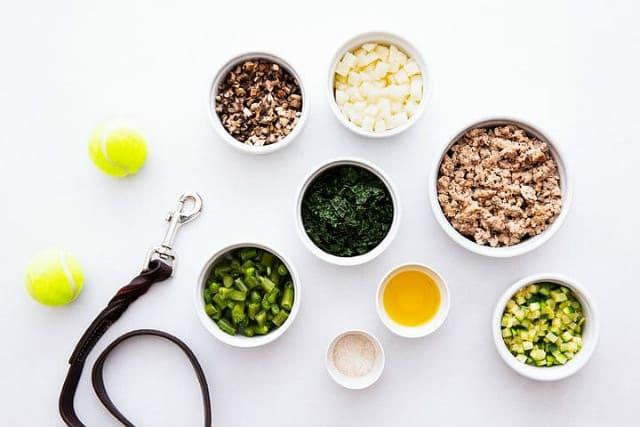 Продолжительность жизни джек-рассел-терьеров – натуральное кормление