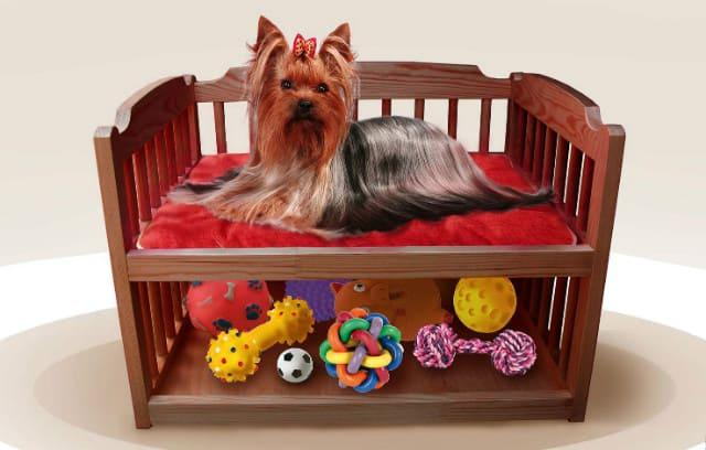 Лежанка для беременной собаки йорк