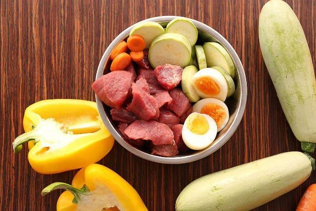 Чем кормить русского спаниеля – натуральные продукты