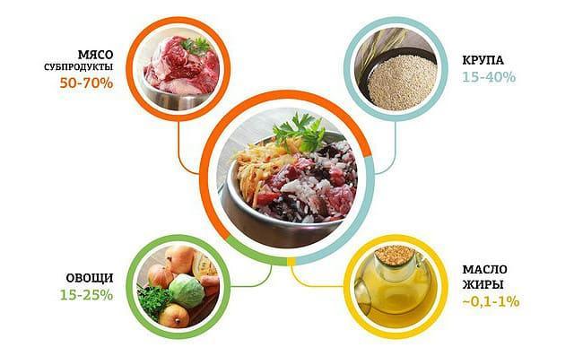 Кормление пекинеса натуральными продуктами