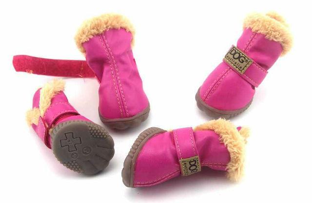 Обувь для чихуахуа – теплые ботиночки