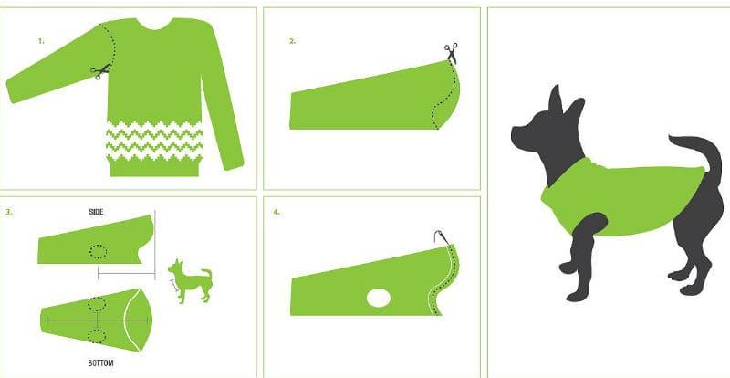 Одежда для шпица – вязаный свитер