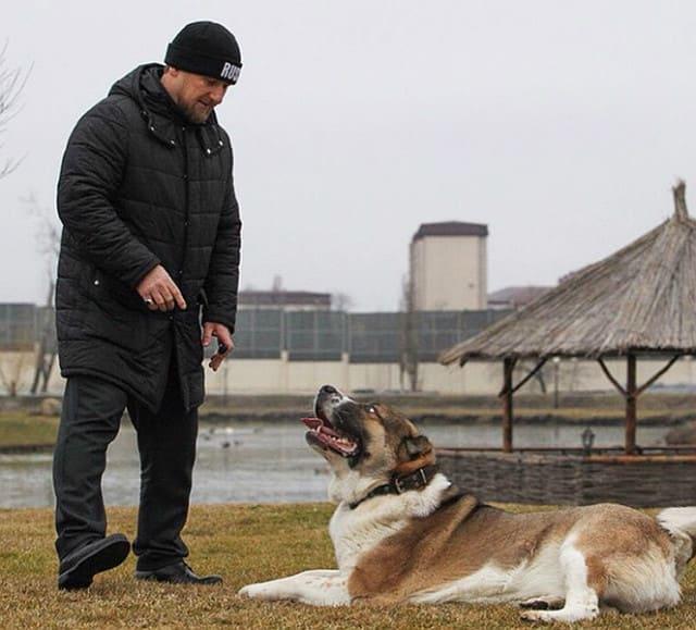 Рамзан Кадыров с собакой