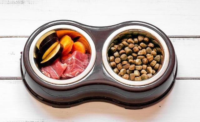 Питание стаффордширского терьера – сухой корм и натуралка