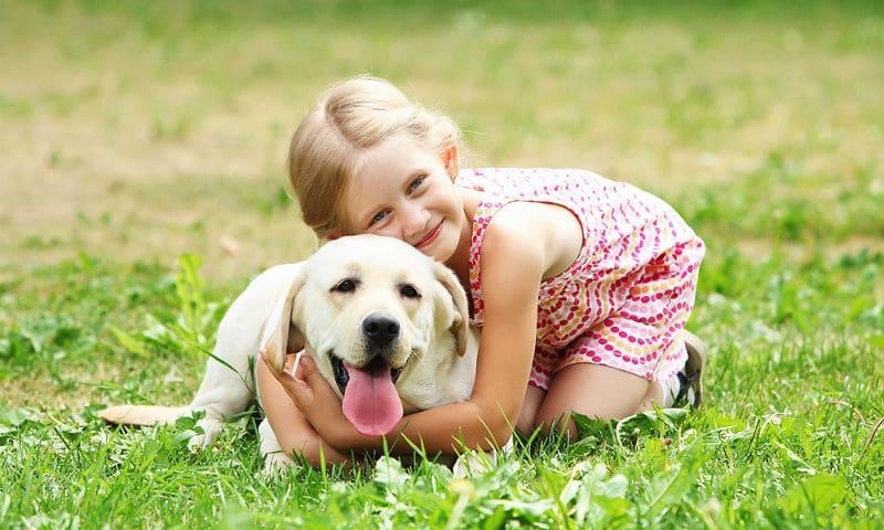 Собаки для детей - главная