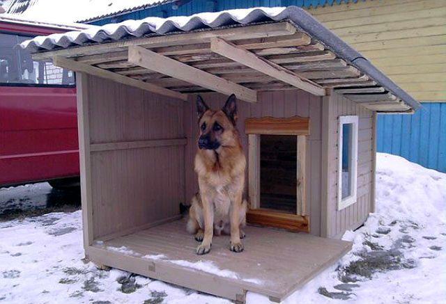 Как утеплить будку для собаки
