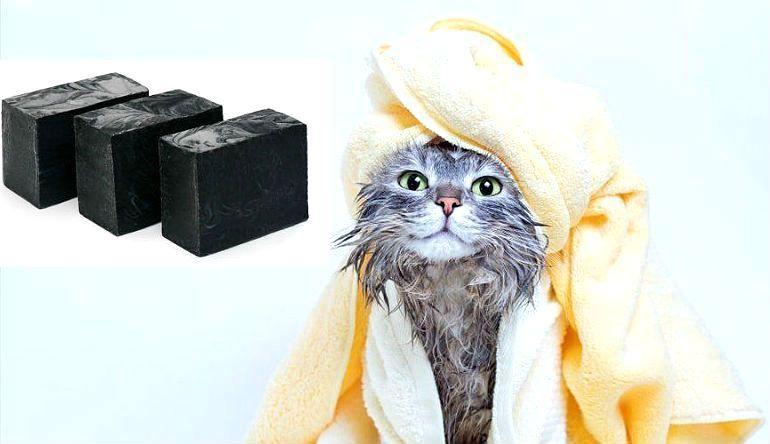 Дегтярное мыло от блох
