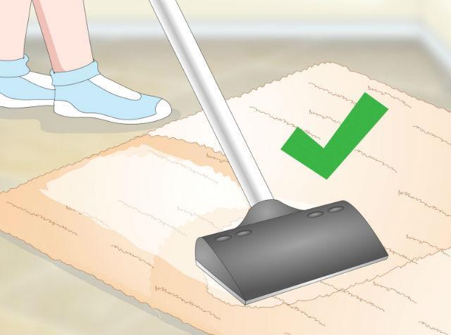 Избавление от запаха мочи на ковре
