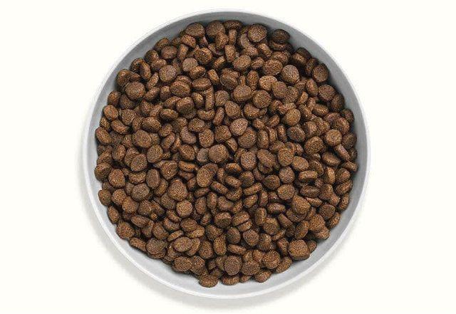 Сухой корм для кошки при мочекаменной болезни