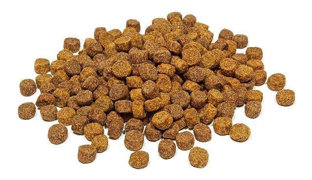 Сухой корм для сиамского котенка