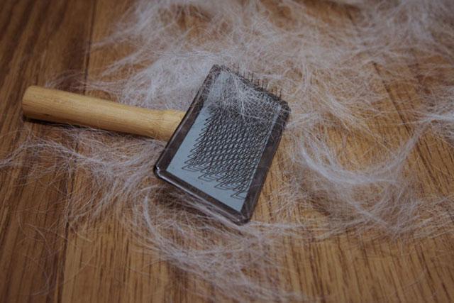Вычесывание кошачьей шерсти