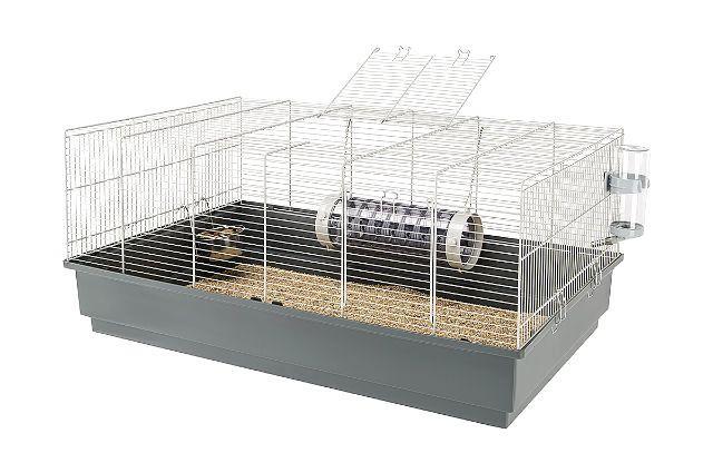 Клетка для гамбийской крысы