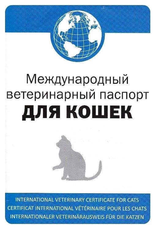 Прививки котятам - паспорт