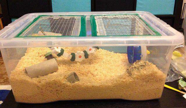 Клетка для хомяка из пластикового контейнера