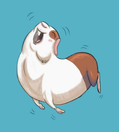 Поведение морских свинок - попкорнинг