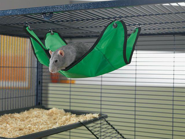 Гамак для декоративной крысы своими руками