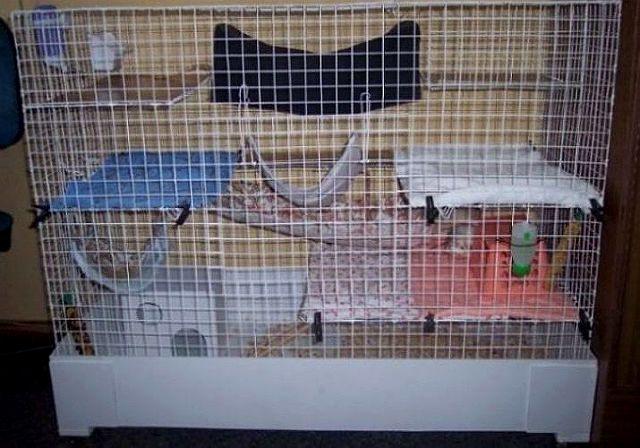Клетка для крысы своими руками
