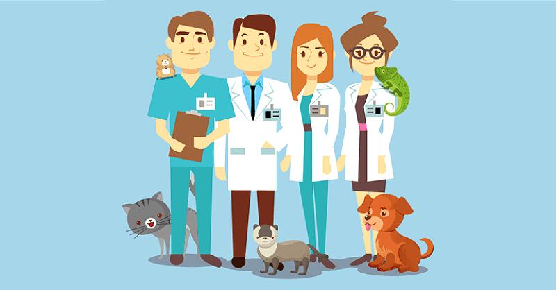 Задайте вопрос ветеринару онлайн бесплатно и без регистрации