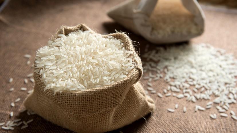 Рис для голубей