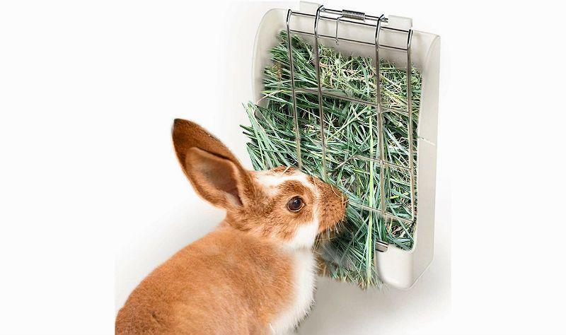 Кормушка для кролика - главное фото