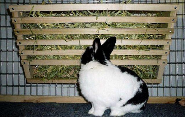 Кормушка настенная для кролика