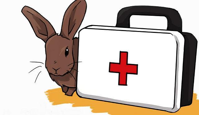 Лекарства для кроликов - антигельминтики