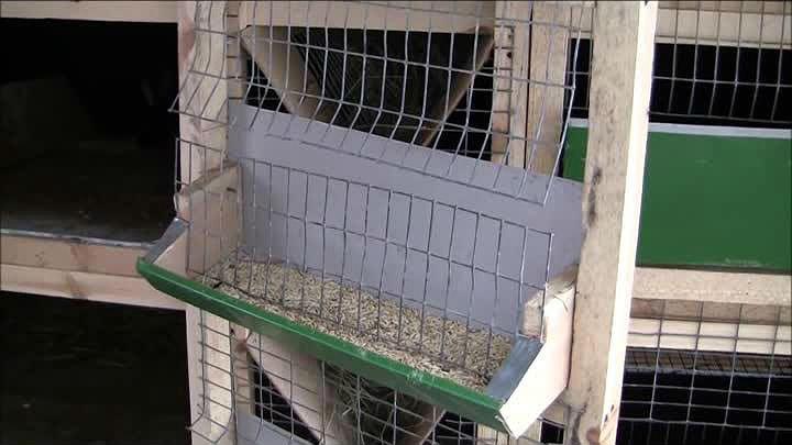 Желобковая кроличья кормушка