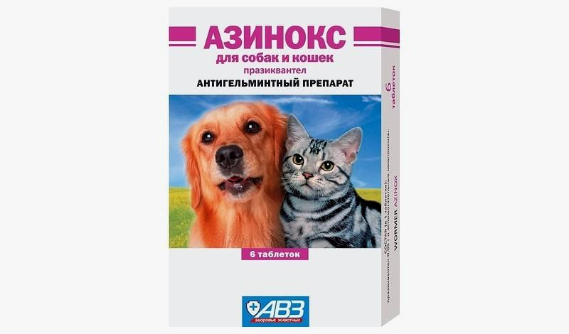 Азинокс для кошек - главное фото
