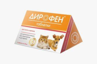 Дирофен для кошек - главное фото