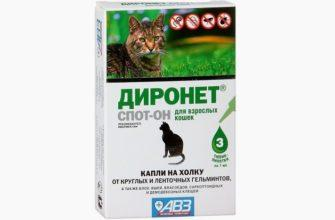 Диронет для кошек