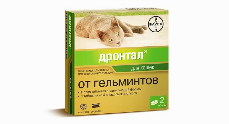 Дронтал против глистов у кошек