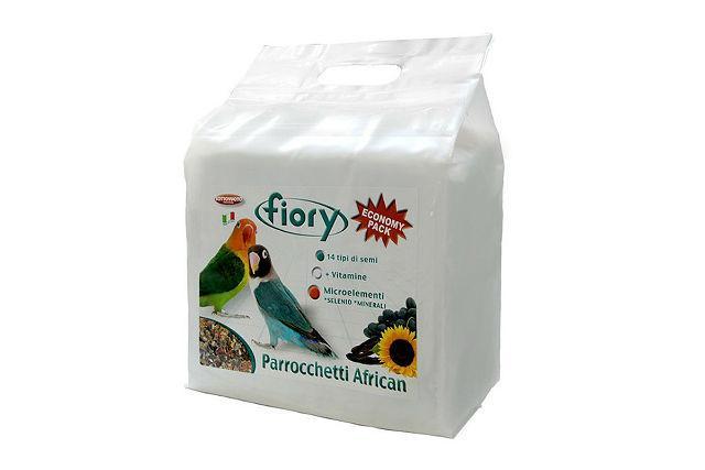Fiory Parrocchetti African