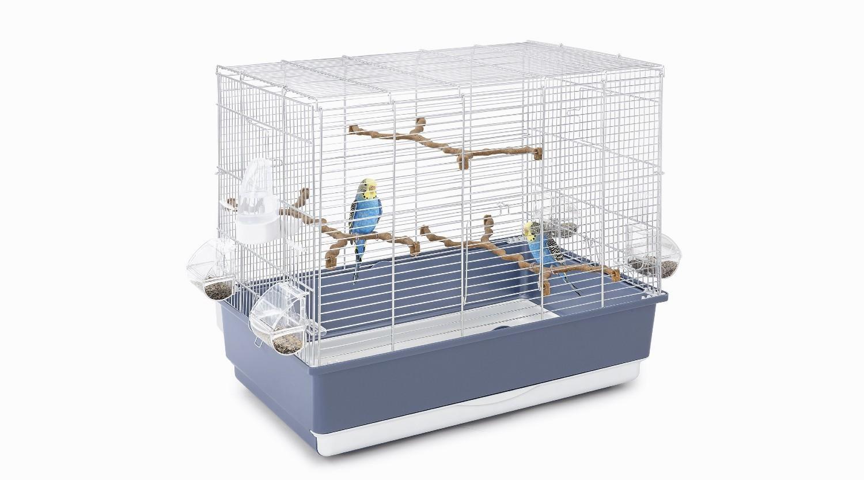 Идеальная клетка для волнистого попугая