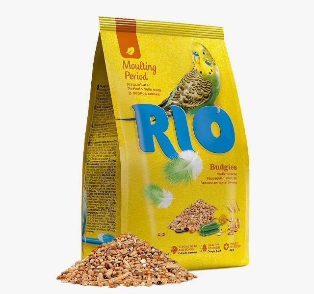 Rio «В период линьки»