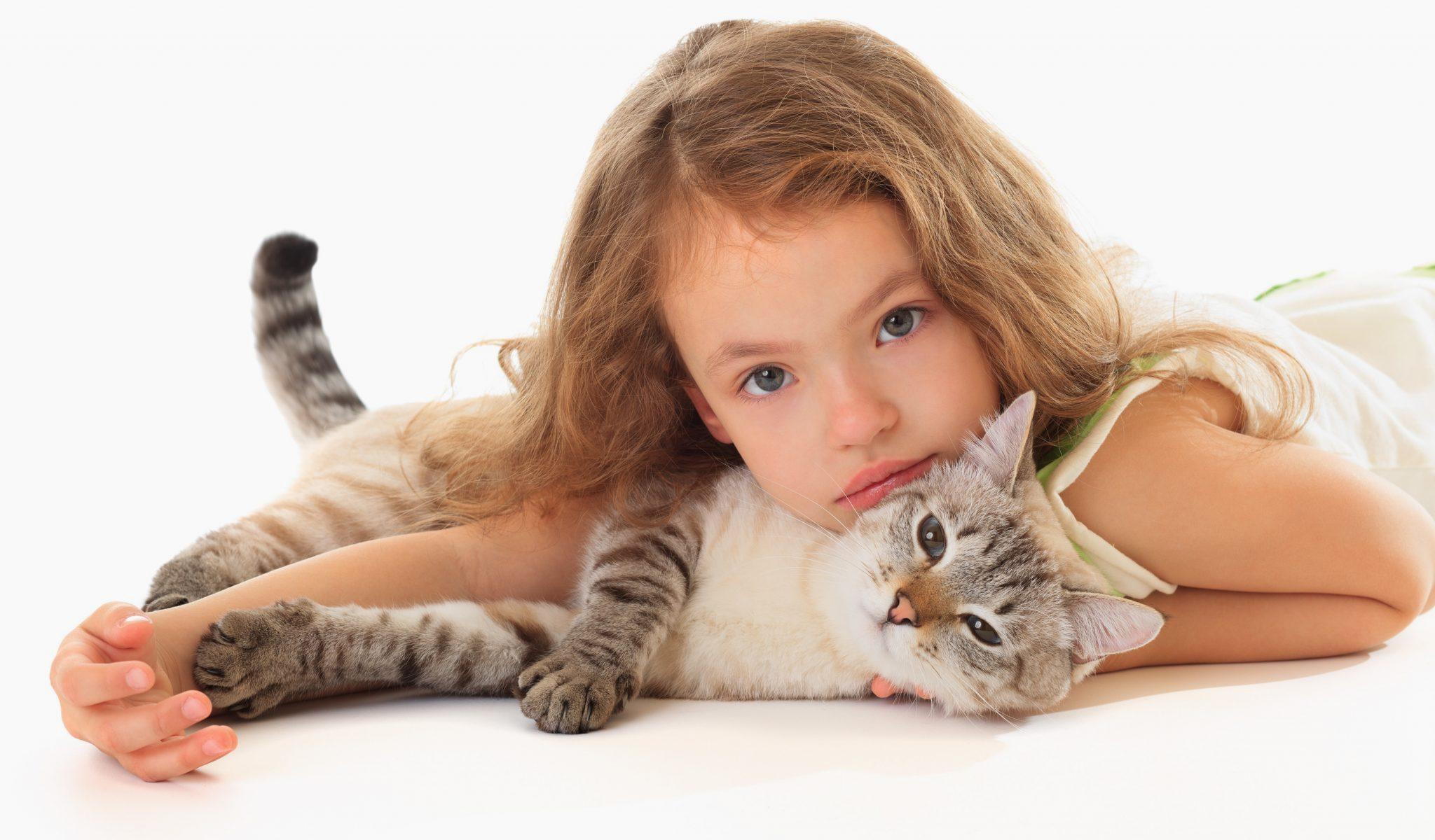 Сколько лет коту - молодость