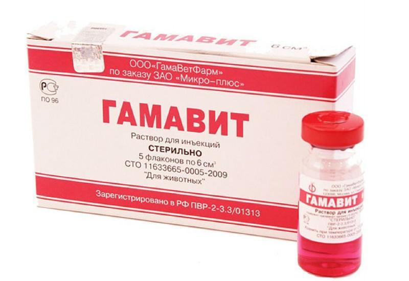 Гамавит - препарат для кошек