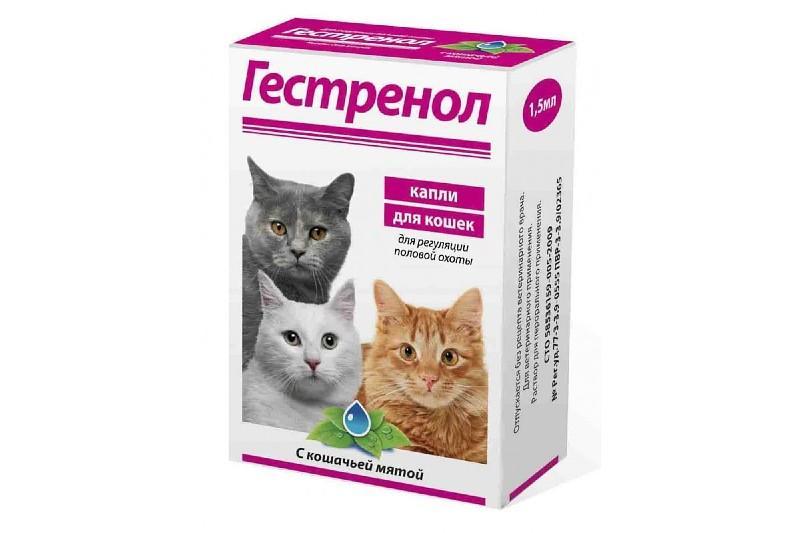 Гестренол для кошек - капли