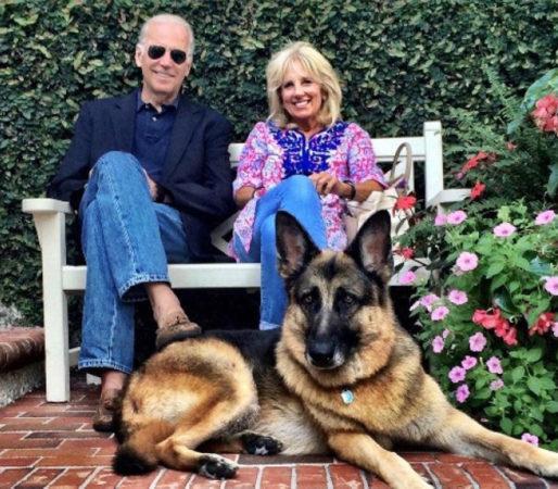 Четвероногие обитатели Белого дома: «первые собаки» президента Джо Байдена