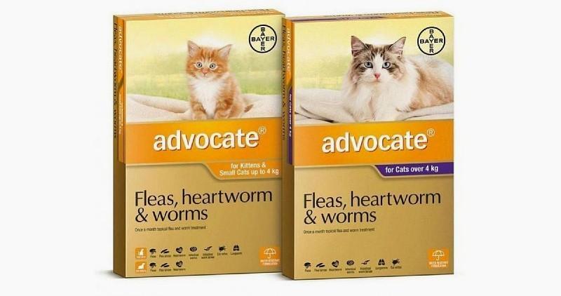 Капли Адвокат для кошек - показания