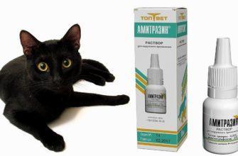 Капли Амитразин для кошек