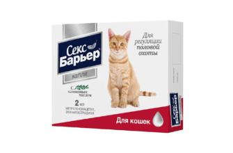 Секс барьер для кошек и котов - главное фото