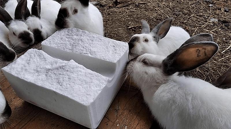 Соль-лизунец для кроликов