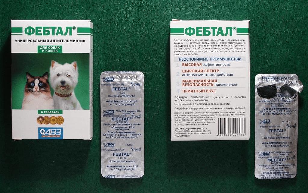 Фебтал для кошек - применение