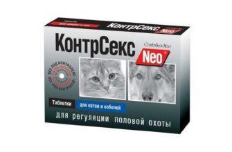 Контрасекс для кошек и котов