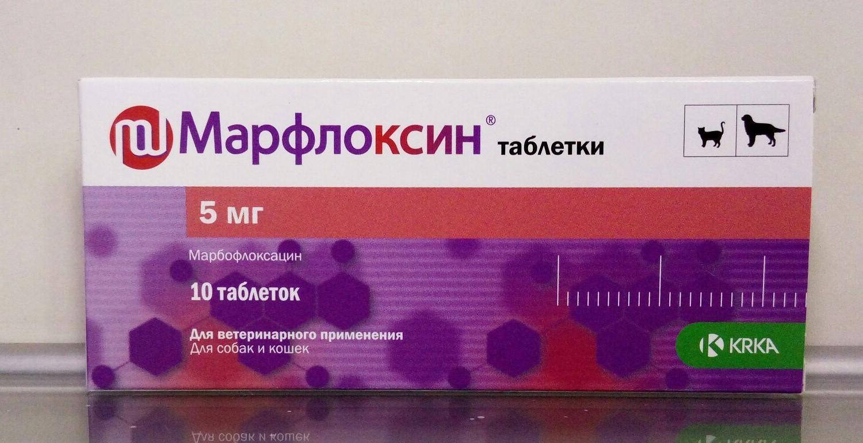 Марфлоксин для кошек - противопоказния