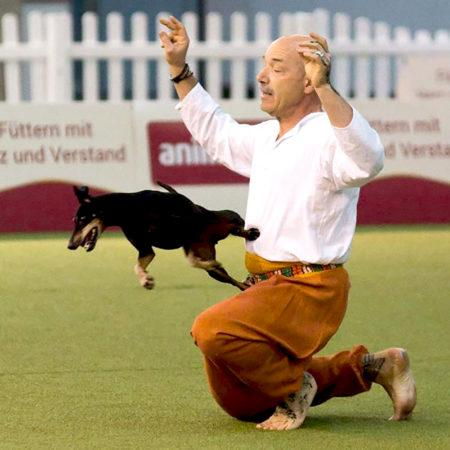 DogDancing: турнир по танцам с собаками