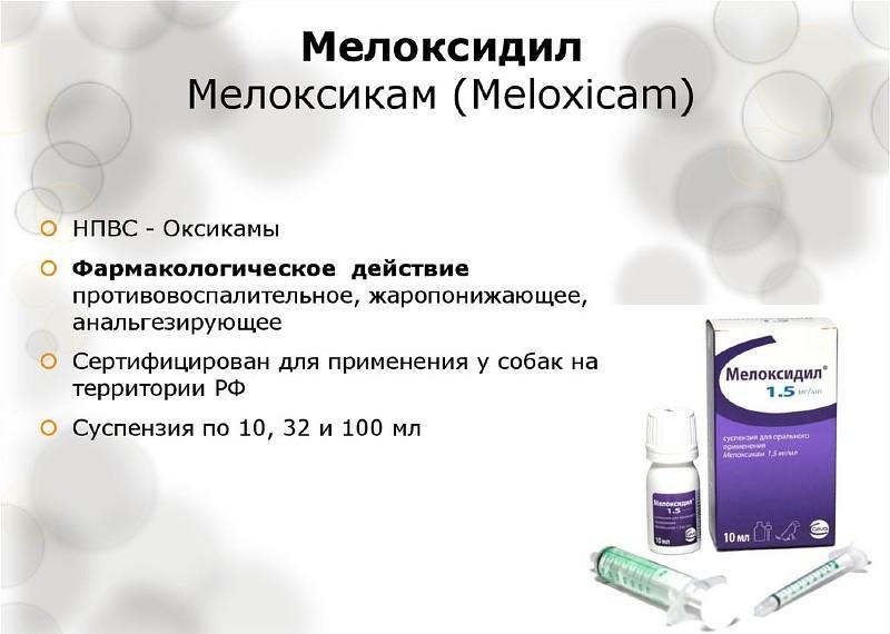 Мелоксикам- препарат для кошек