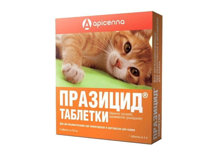 Празицид для кошек - главное фото