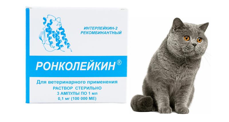 Ронколейкин для кошек
